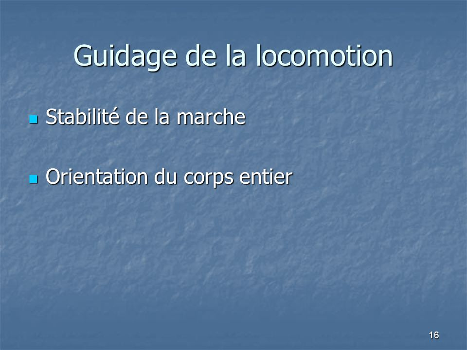 Guidage de la locomotion