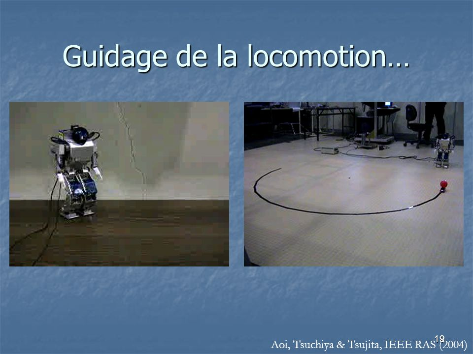 Guidage de la locomotion…