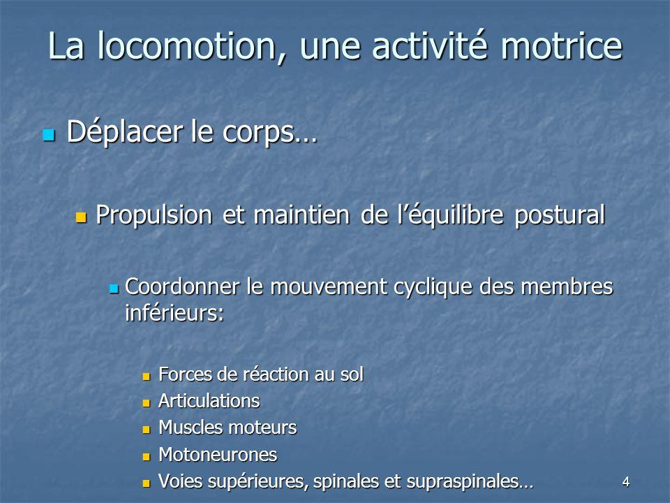 La locomotion, une activité motrice