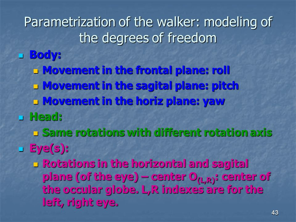 Parametrization of the walker: modeling of the degrees of freedom