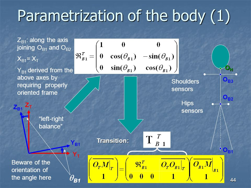 Parametrization of the body (1)