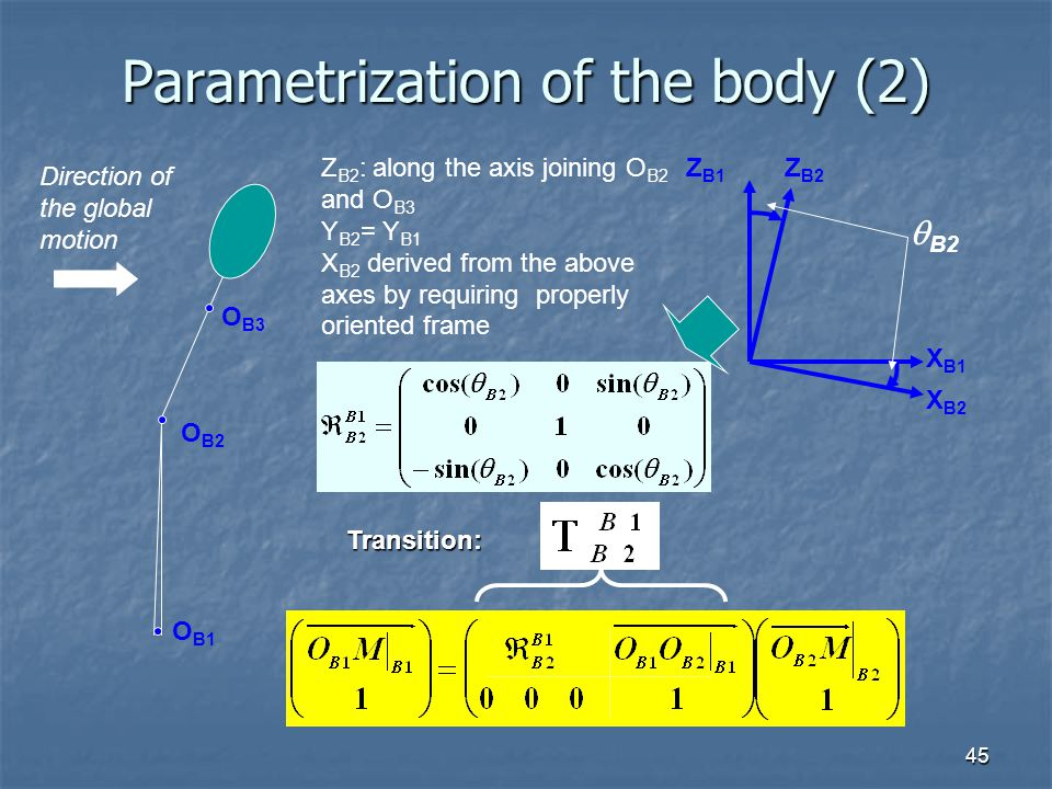 Parametrization of the body (2)