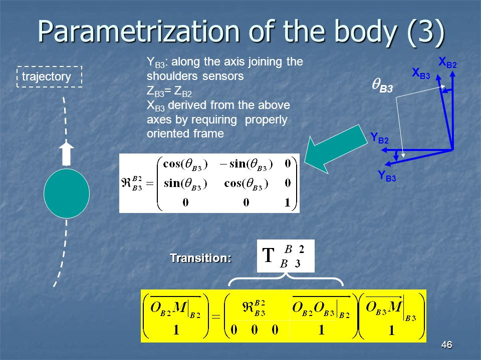 Parametrization of the body (3)