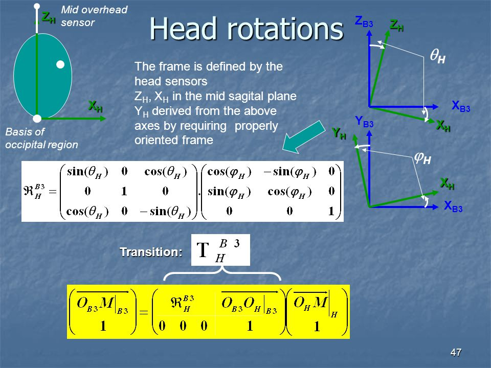 Head rotations H H ZH ZB3 ZH