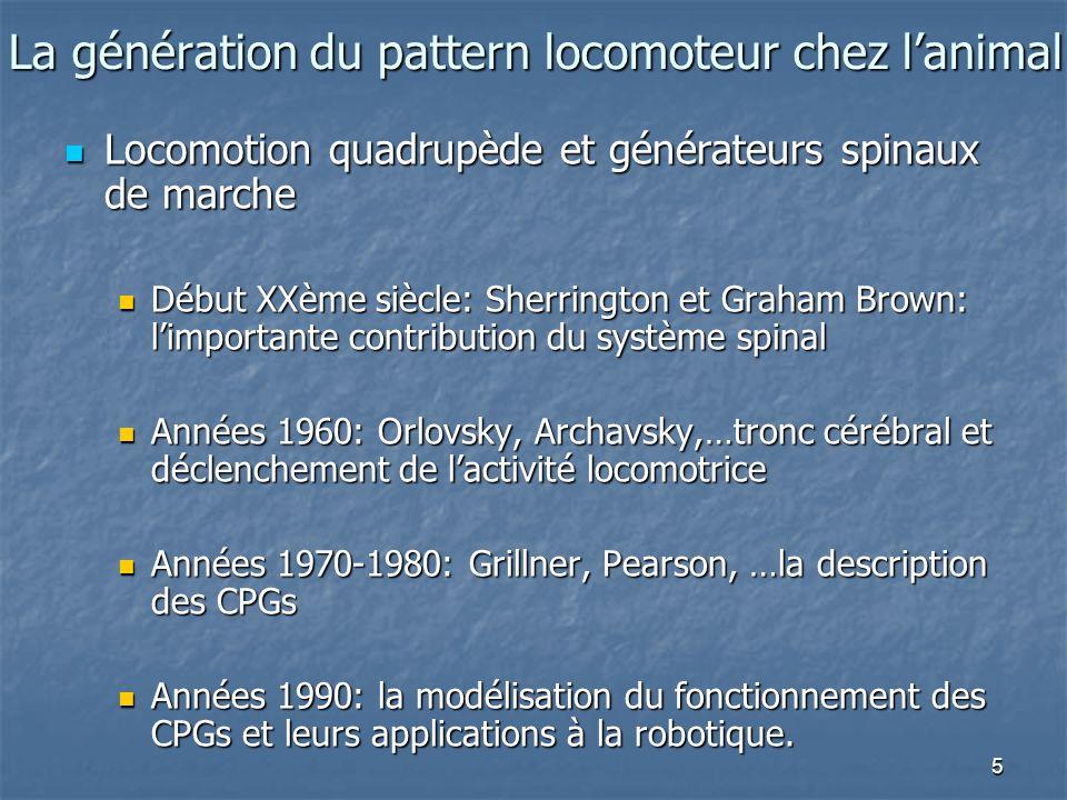 La génération du pattern locomoteur chez l'animal