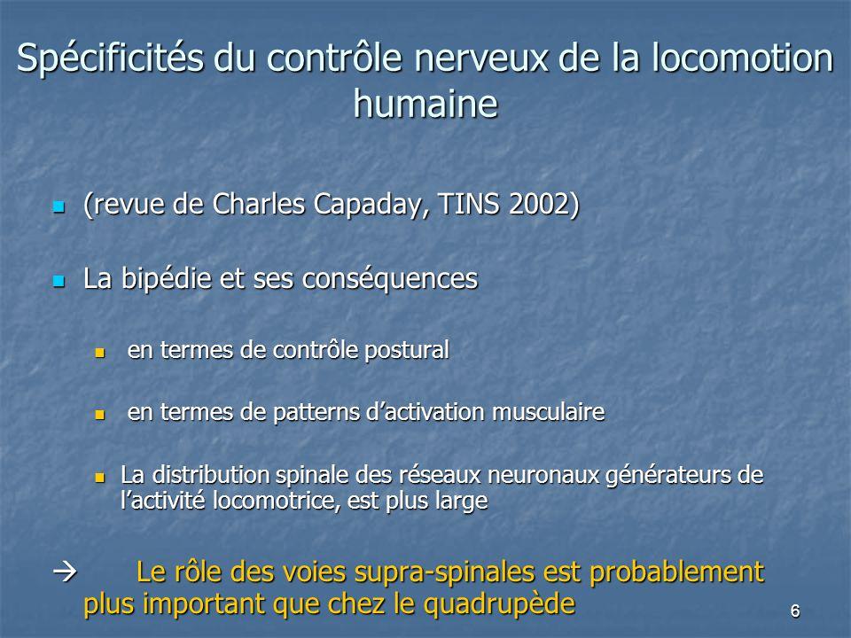 Spécificités du contrôle nerveux de la locomotion humaine