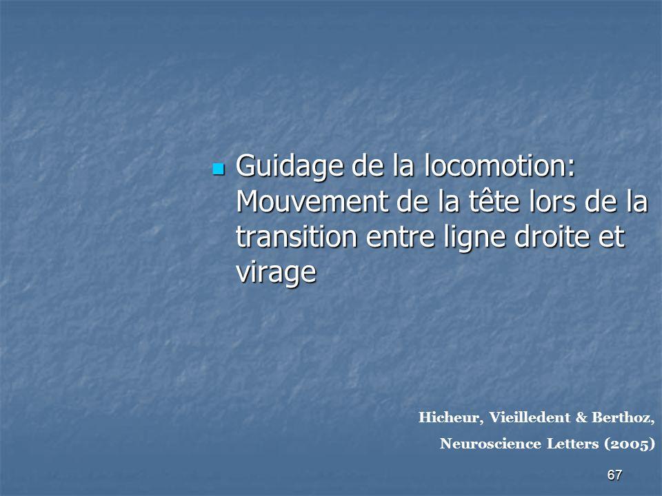 Guidage de la locomotion: Mouvement de la tête lors de la transition entre ligne droite et virage