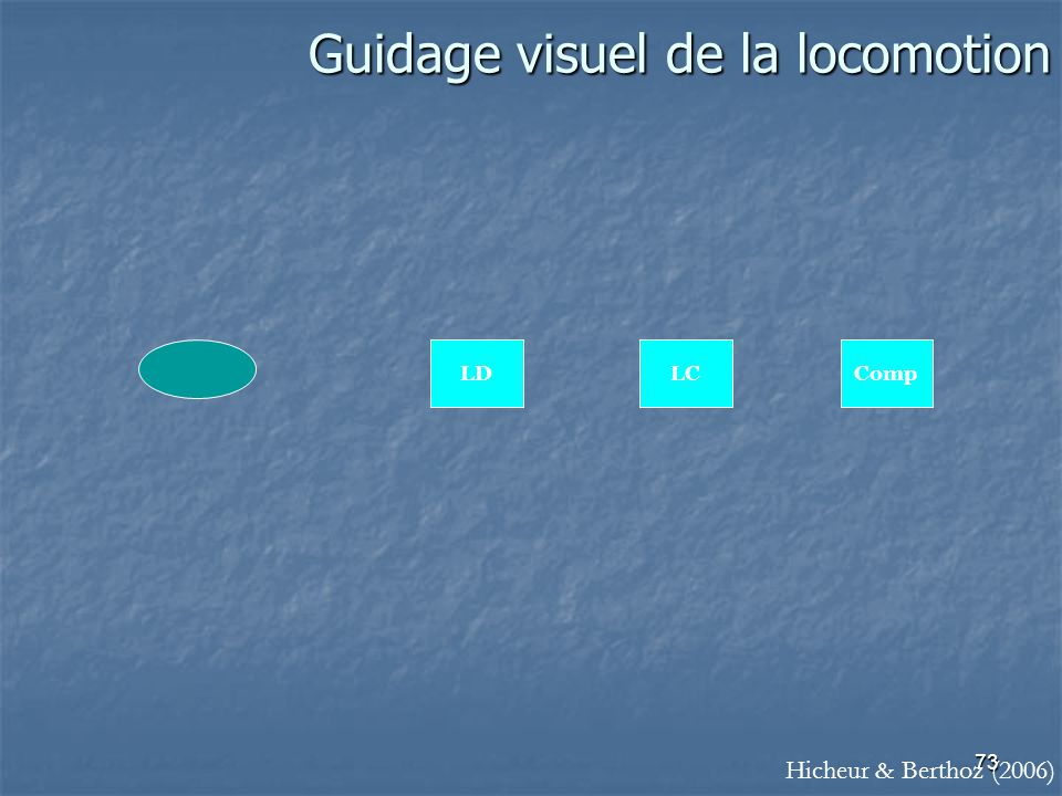 Guidage visuel de la locomotion