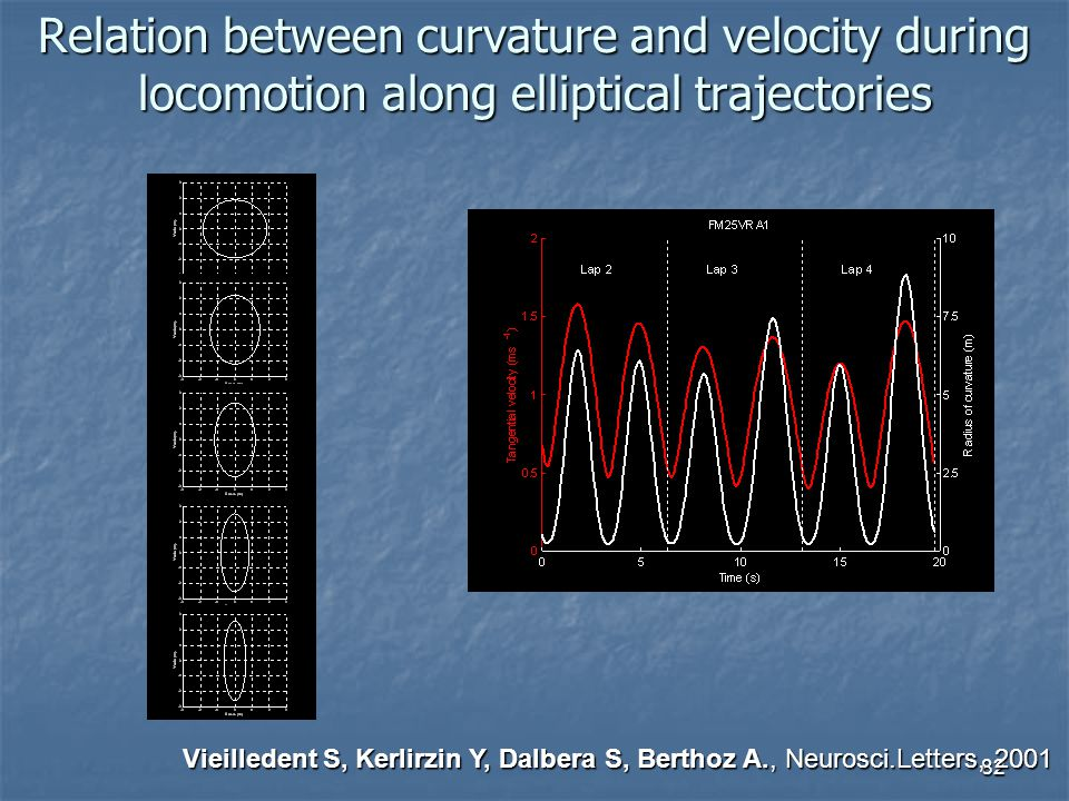 Relation between curvature and velocity during locomotion along elliptical trajectories