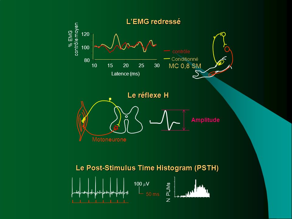 Le Post-Stimulus Time Histogram (PSTH)