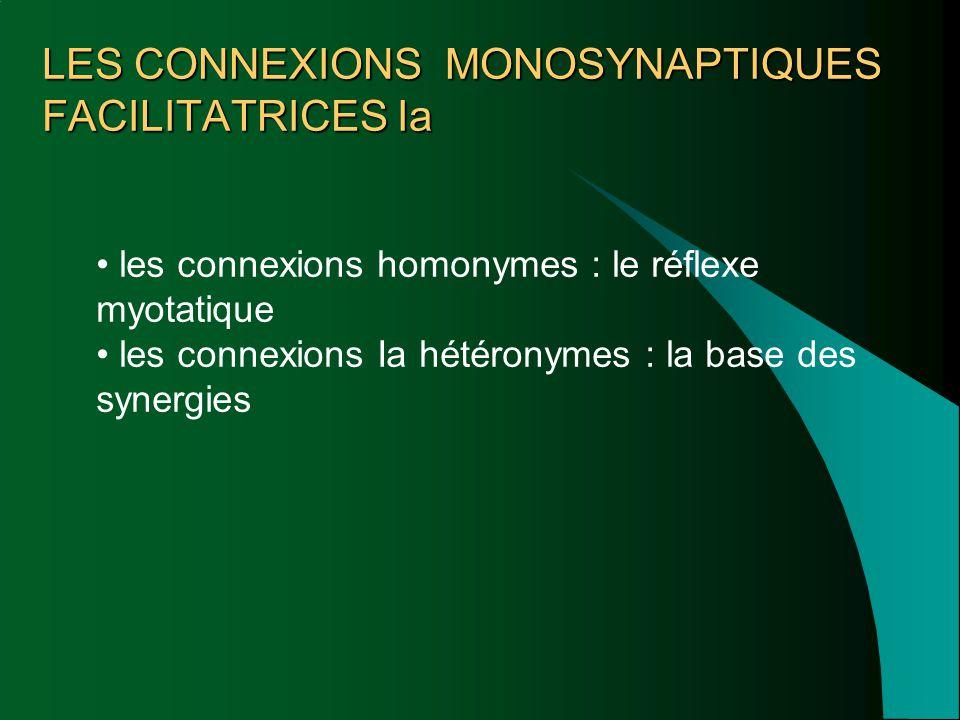 LES CONNEXIONS MONOSYNAPTIQUES FACILITATRICES Ia