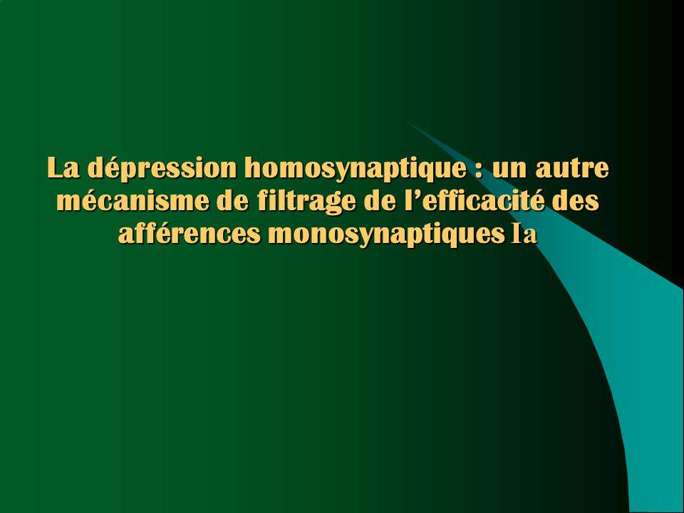 La dépression homosynaptique : un autre mécanisme de filtrage de l'efficacité des afférences monosynaptiques Ia
