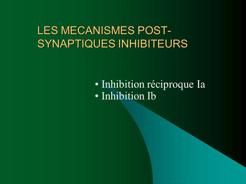 LES MECANISMES POST-SYNAPTIQUES INHIBITEURS
