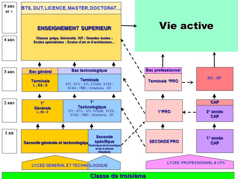 Vie active Classe de troisième ENSEIGNEMENT SUPERIEUR 5 ans et +