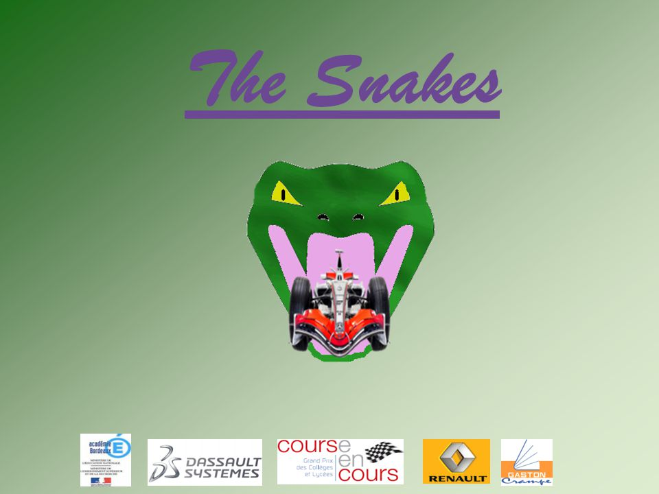 The Snakes 1 1