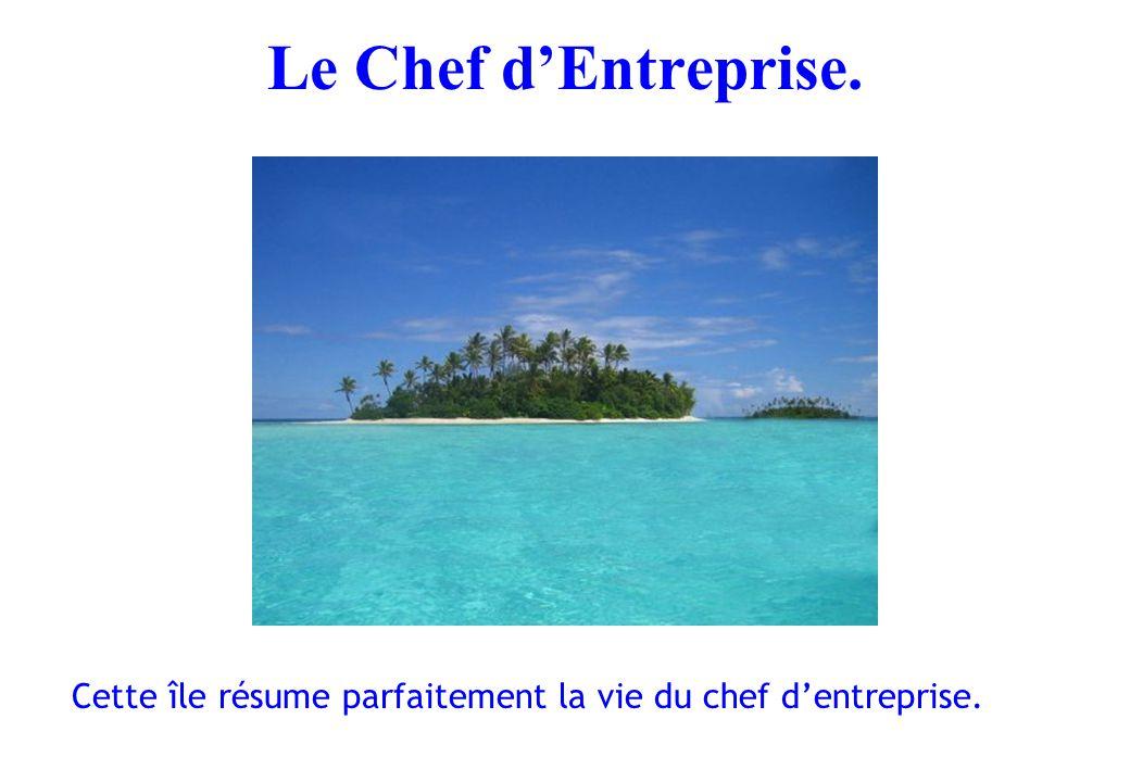 Le Chef d'Entreprise. Cette île résume parfaitement la vie du chef d'entreprise.