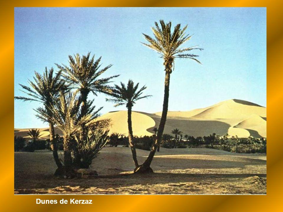Dunes de Kerzaz