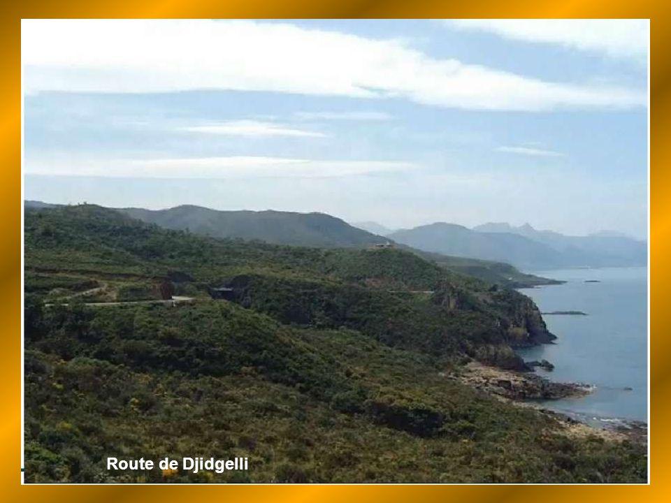 Route de Djidgelli