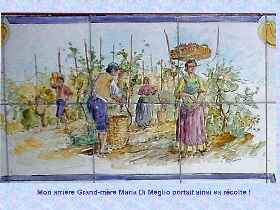 Mon arrière Grand-mère Maria Di Meglio portait ainsi sa récolte !
