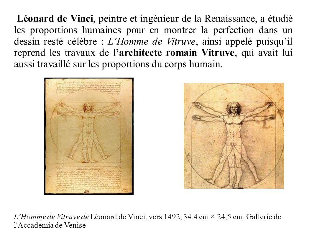 Léonard de Vinci, peintre et ingénieur de la Renaissance, a étudié les proportions humaines pour en montrer la perfection dans un dessin resté célèbre : L'Homme de Vitruve, ainsi appelé puisqu'il reprend les travaux de l'architecte romain Vitruve, qui avait lui aussi travaillé sur les proportions du corps humain.