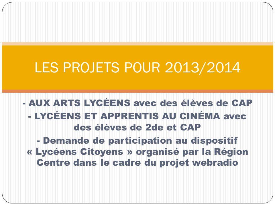 LES PROJETS POUR 2013/2014 - AUX ARTS LYCÉENS avec des élèves de CAP