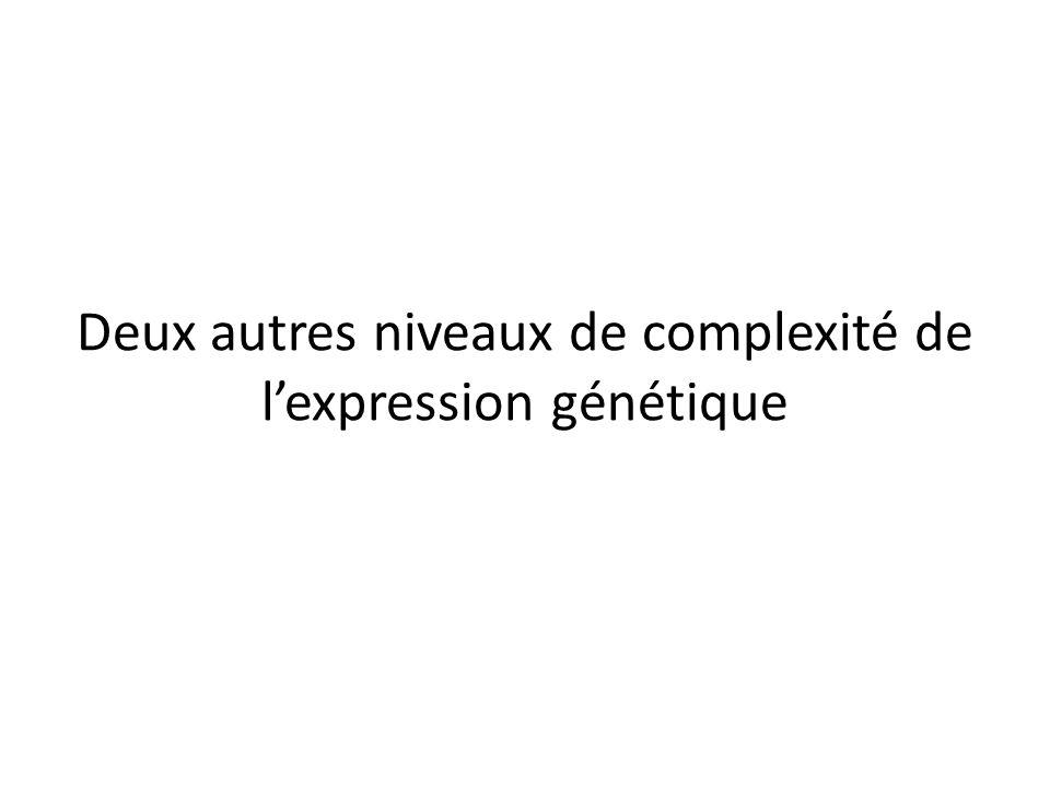 Deux autres niveaux de complexité de l'expression génétique