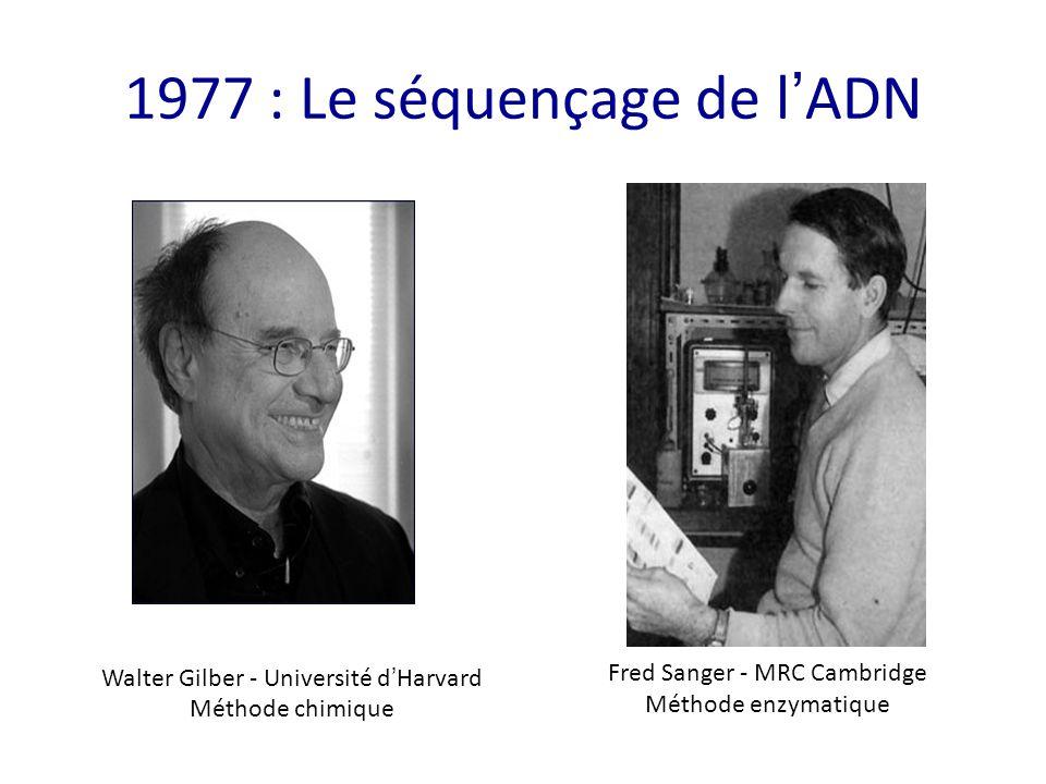 1977 : Le séquençage de l'ADN