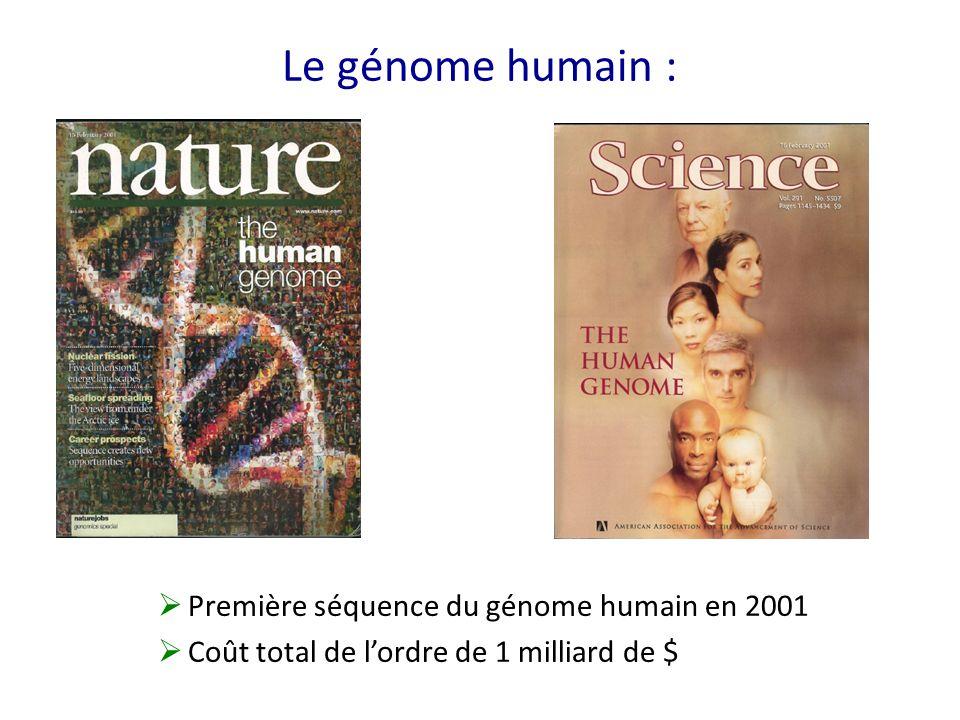 Le génome humain : Première séquence du génome humain en 2001