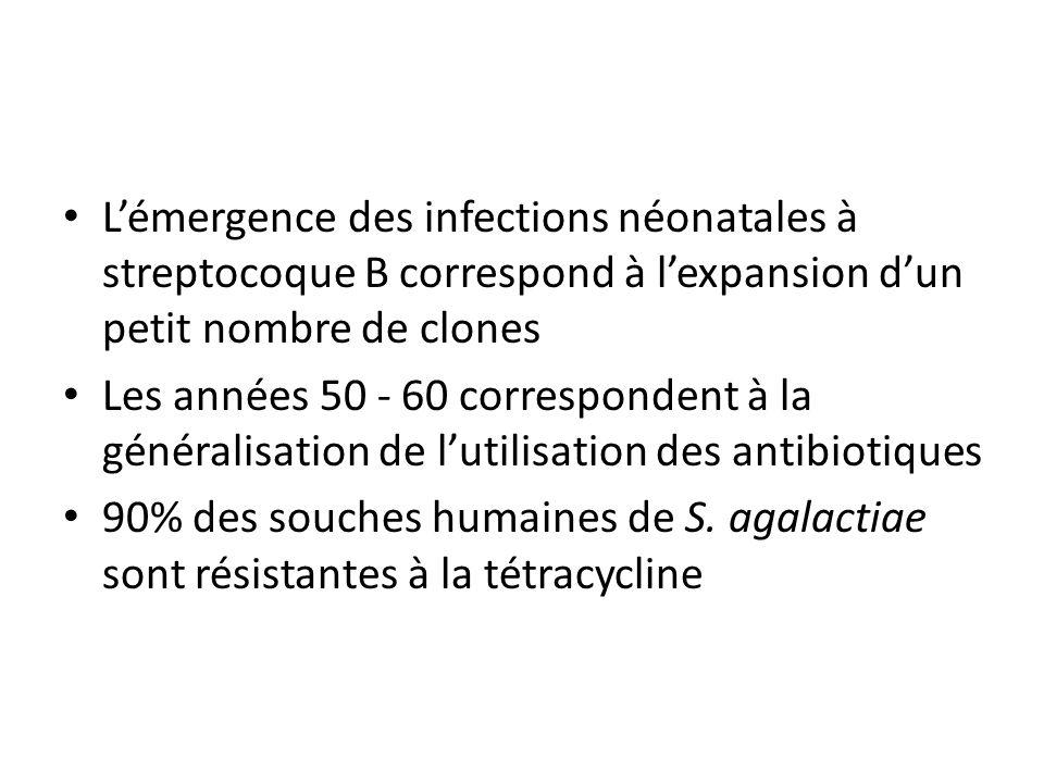 L'émergence des infections néonatales à streptocoque B correspond à l'expansion d'un petit nombre de clones