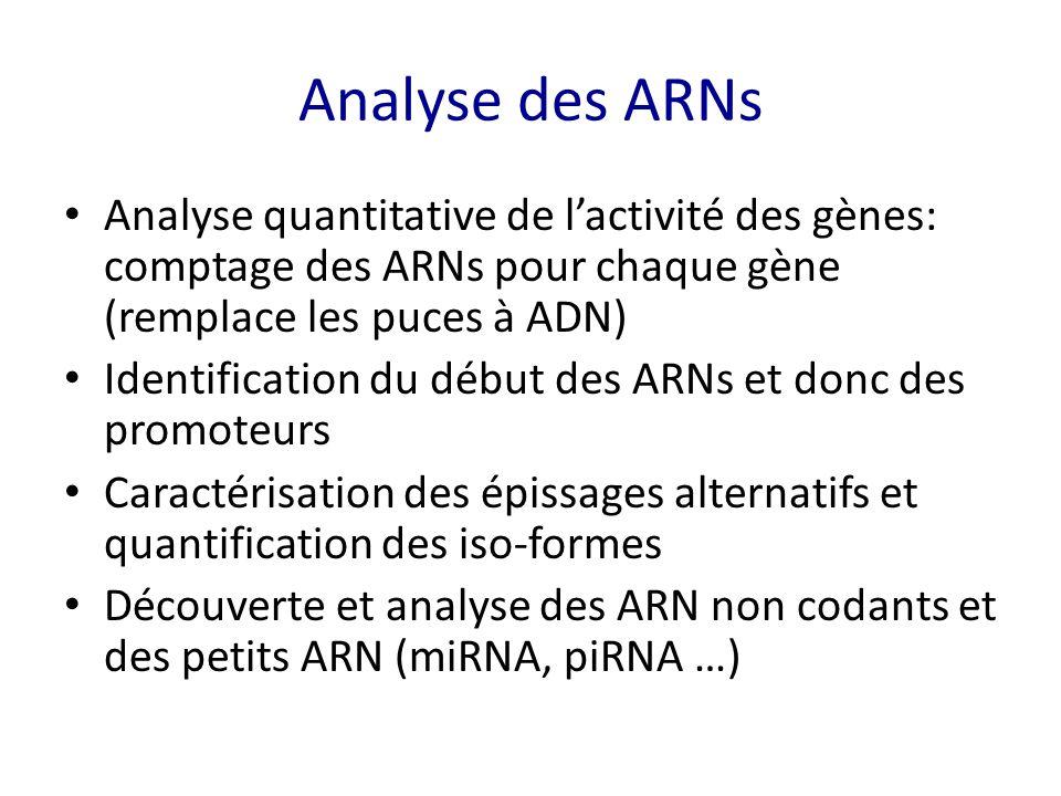 Analyse des ARNs Analyse quantitative de l'activité des gènes: comptage des ARNs pour chaque gène (remplace les puces à ADN)