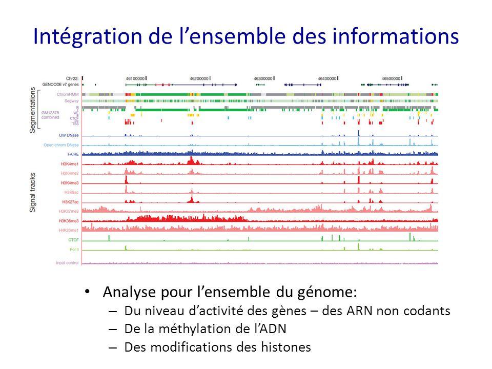 Intégration de l'ensemble des informations