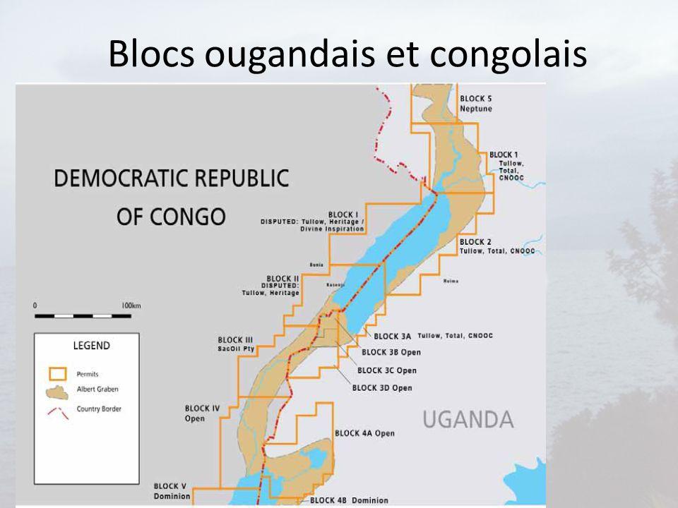Blocs ougandais et congolais