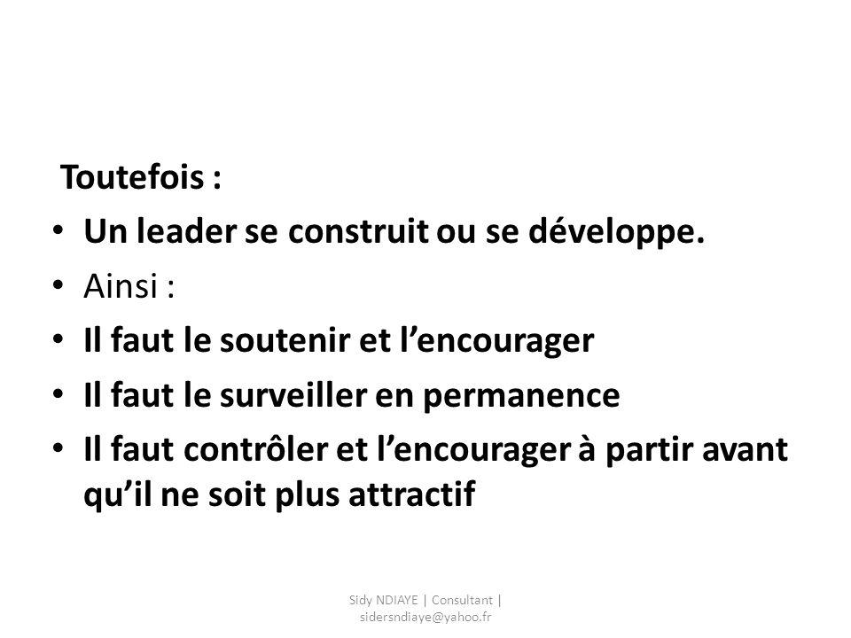 Sidy NDIAYE | Consultant | sidersndiaye@yahoo.fr