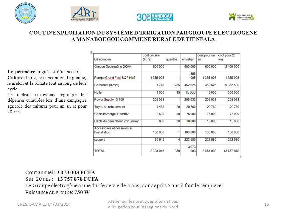 COUT D'EXPLOITATION DU SYSTÈME D'IRRIGATION PAR GROUPE ELECTROGENE A MANABOUGOU COMMUNE RURALE DE TIENFALA