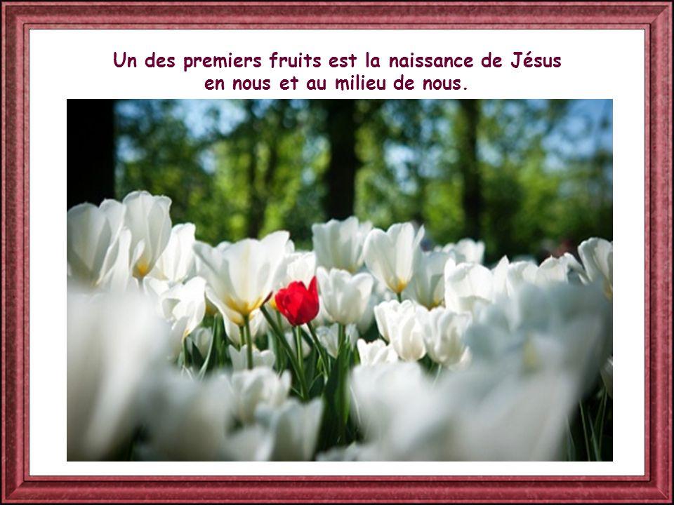 Un des premiers fruits est la naissance de Jésus en nous et au milieu de nous.