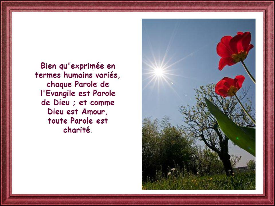 Bien qu exprimée en termes humains variés, chaque Parole de l Evangile est Parole de Dieu ; et comme Dieu est Amour, toute Parole est charité.