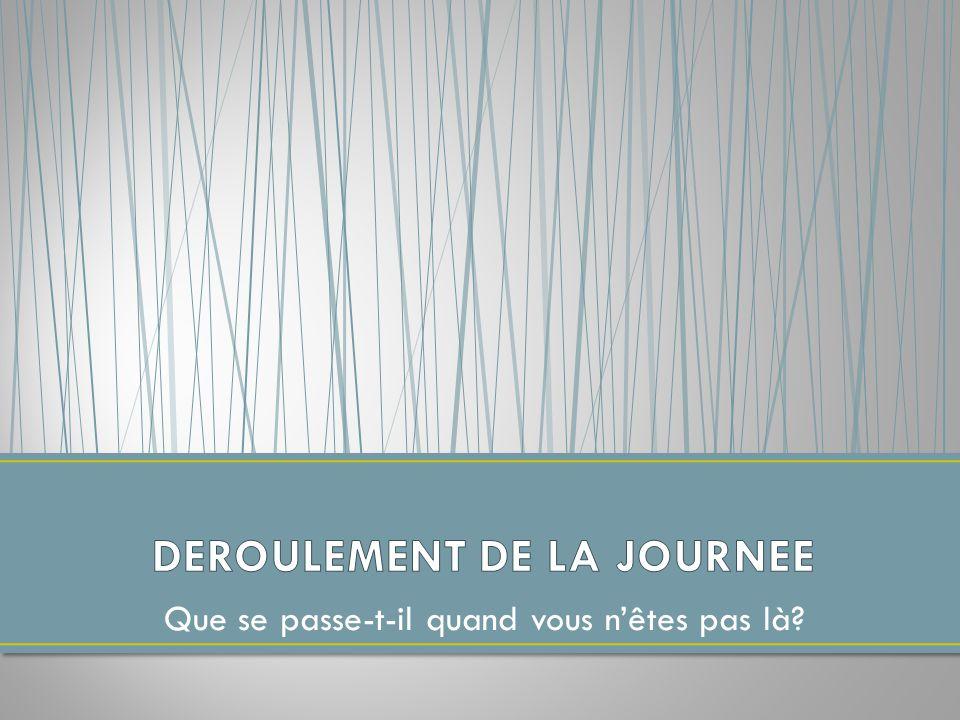 DEROULEMENT DE LA JOURNEE