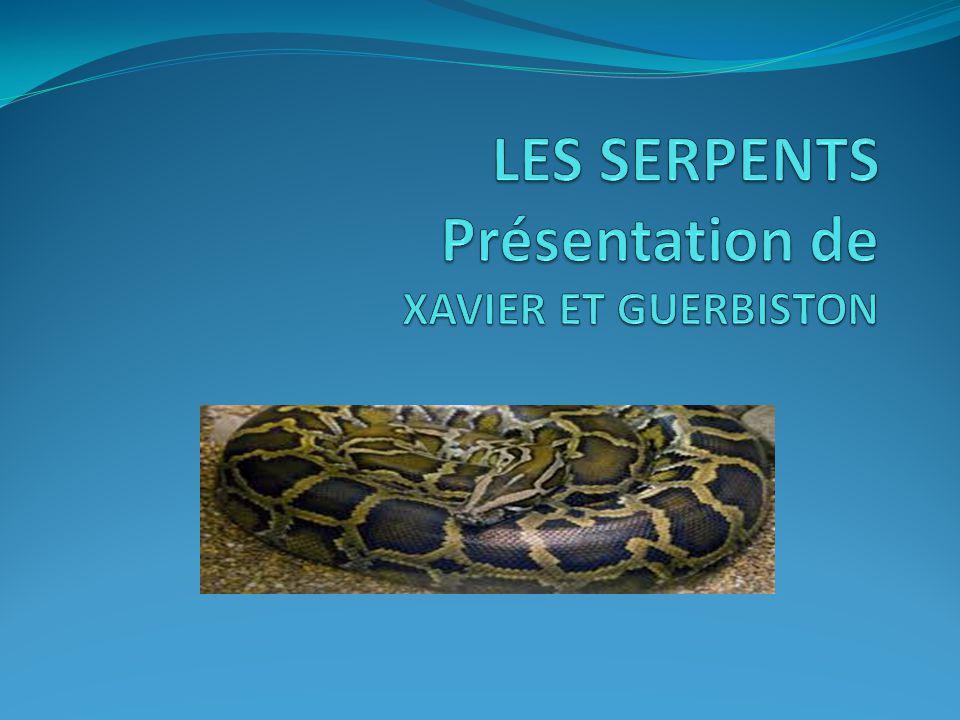 LES SERPENTS Présentation de XAVIER ET GUERBISTON