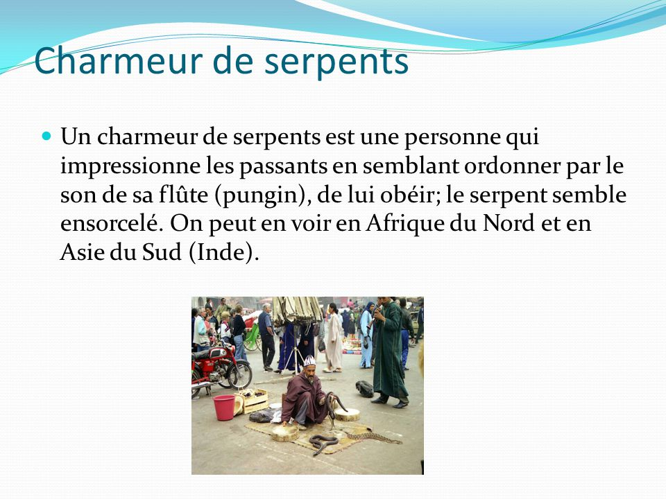 Charmeur de serpents