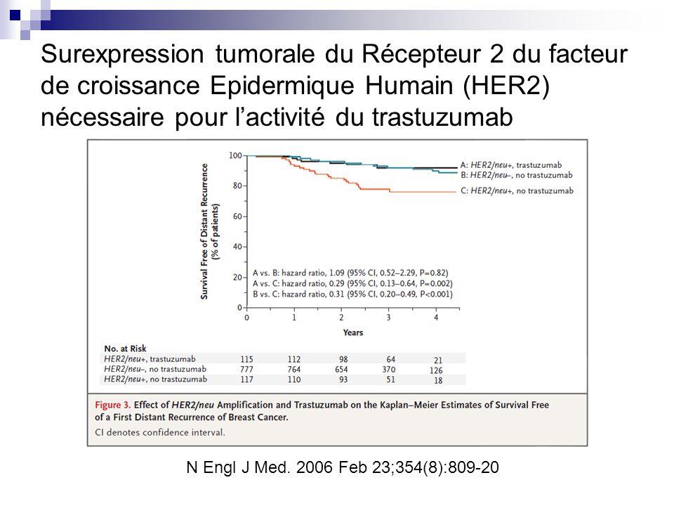 Surexpression tumorale du Récepteur 2 du facteur de croissance Epidermique Humain (HER2) nécessaire pour l'activité du trastuzumab