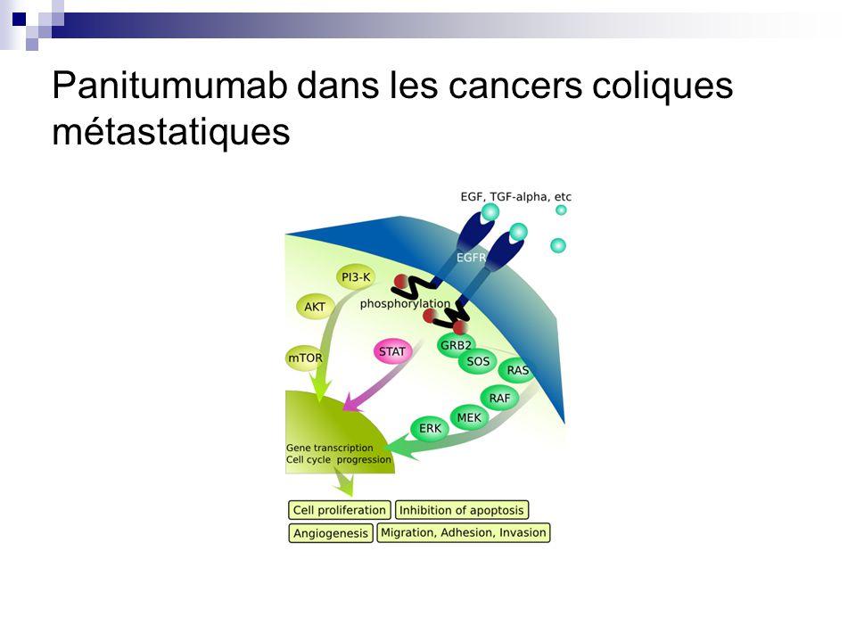 Panitumumab dans les cancers coliques métastatiques