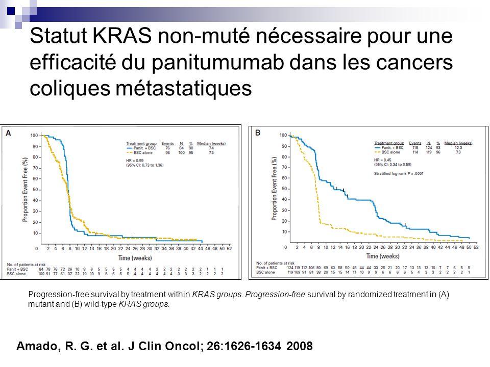 Statut KRAS non-muté nécessaire pour une efficacité du panitumumab dans les cancers coliques métastatiques