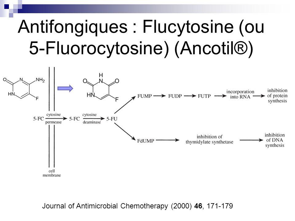 Antifongiques : Flucytosine (ou 5-Fluorocytosine) (Ancotil®)