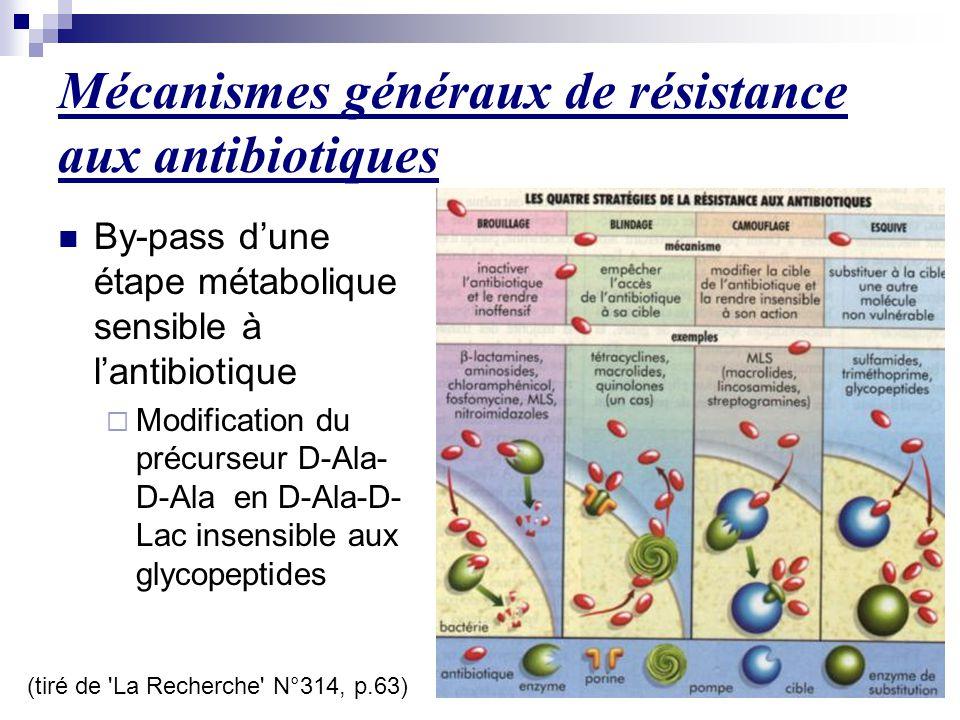 Mécanismes généraux de résistance aux antibiotiques