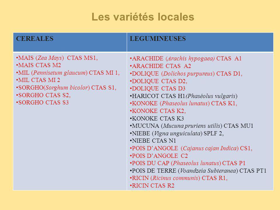 Les variétés locales CEREALES LEGUMINEUSES MAIS (Zea Mays) CTAS MS1,