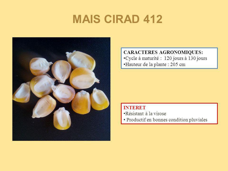MAIS CIRAD 412 CARACTERES AGRONOMIQUES:
