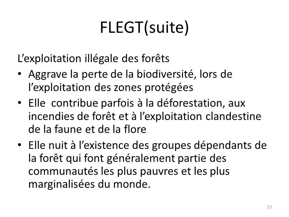 FLEGT(suite) L'exploitation illégale des forêts