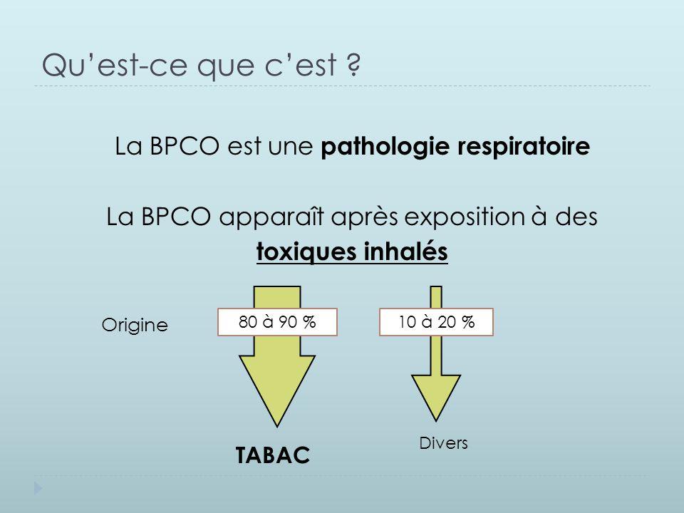 Qu'est-ce que c'est La BPCO est une pathologie respiratoire