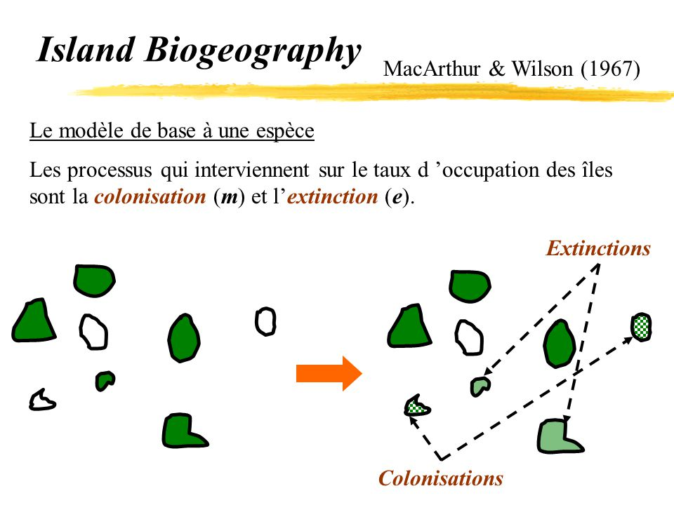 Island Biogeography MacArthur & Wilson (1967)