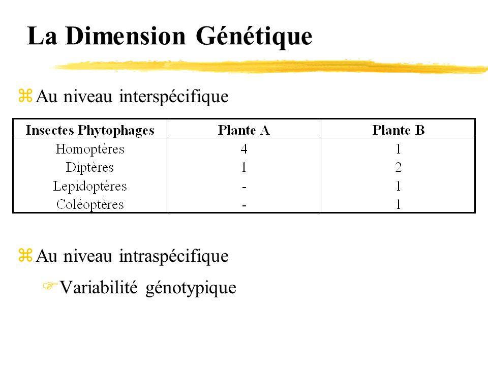 La Dimension Génétique